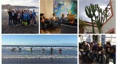 Surf Office: mit der ganzen Firma Richtung Strand?